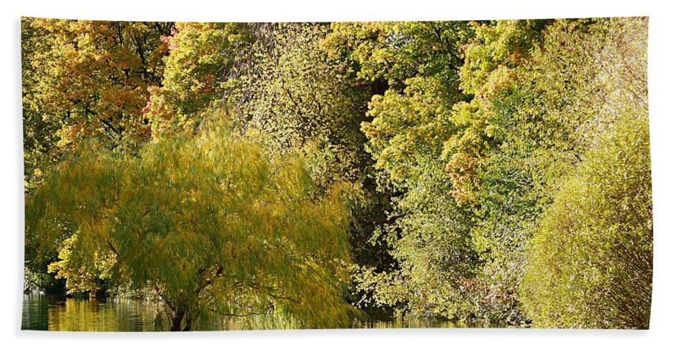 Fall Bath Sheet featuring the photograph Nature Of The Fall by Masha Batkova