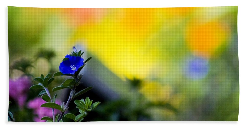Flower Bath Sheet featuring the photograph Nature Splash by Shannon Tibbetts