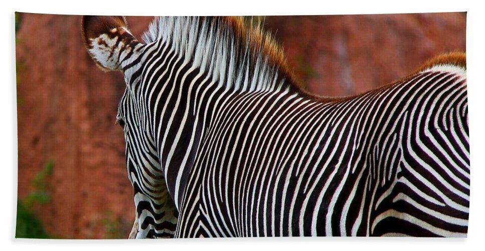 Zebra Bath Sheet featuring the photograph Nature's Barcode by Davandra Cribbie
