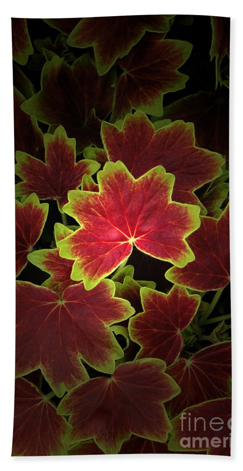 Mother Nature Bath Sheet featuring the photograph Nature's Still Life Of Heuchera by Mike Nellums