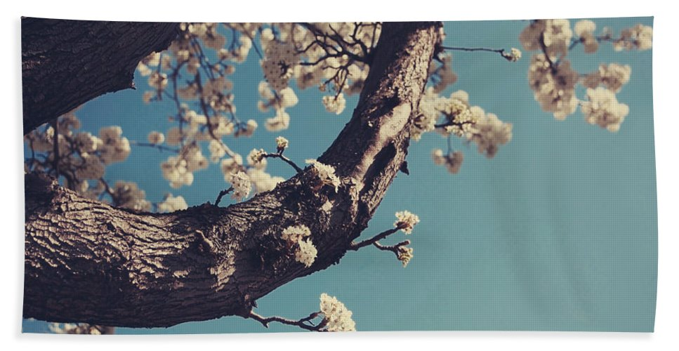 Apple Blossom Tree Bath Sheet featuring the photograph Near by Laurie Search