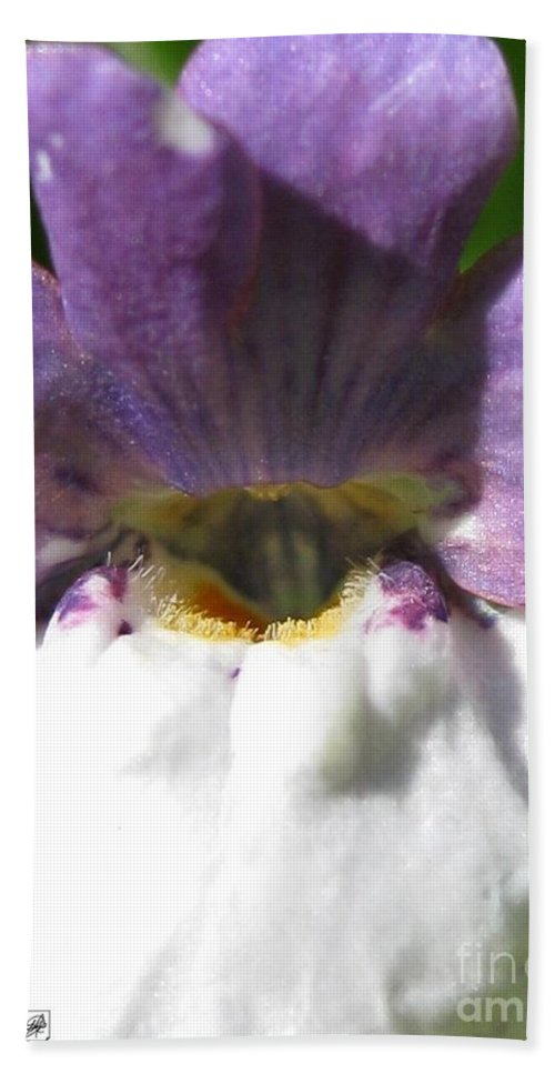 Nemesia Bath Sheet featuring the photograph Nemesia From The Tapestry Mix by J McCombie