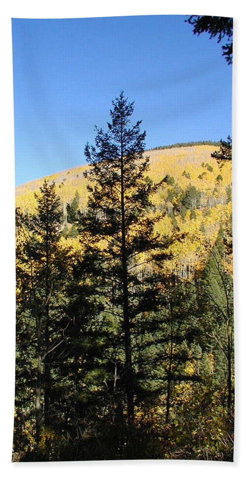 Landscape Hand Towel featuring the photograph New Mexico Series - Autumn On The Mountain II by Kathleen Grace