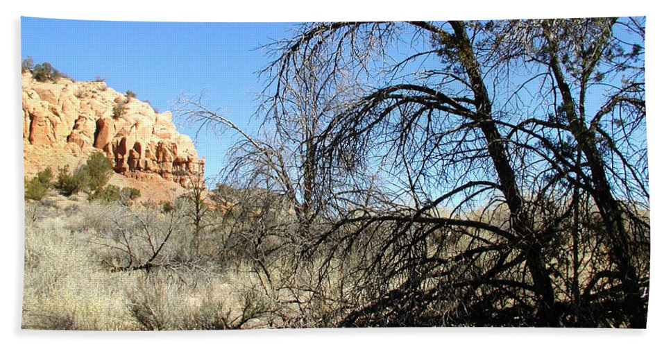 Landscape Hand Towel featuring the photograph New Mexico Series - Bandelier II by Kathleen Grace