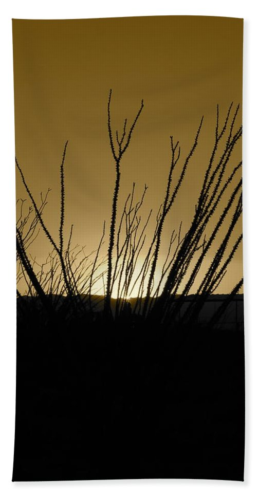 Sepia Bath Sheet featuring the photograph Ocotillo Sunset by Kume Bryant