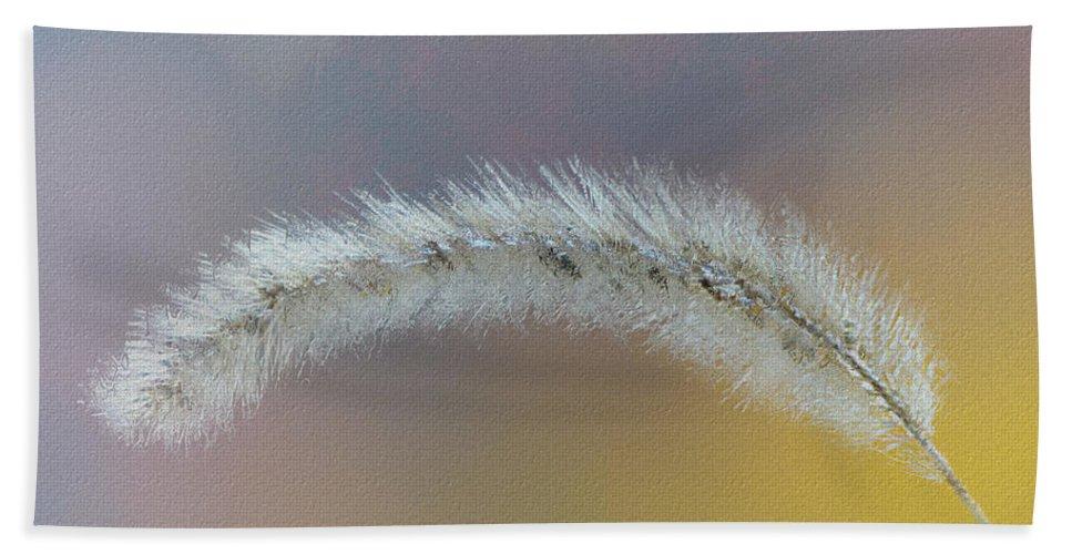 Ron Jones Bath Sheet featuring the photograph October Grass by Ron Jones