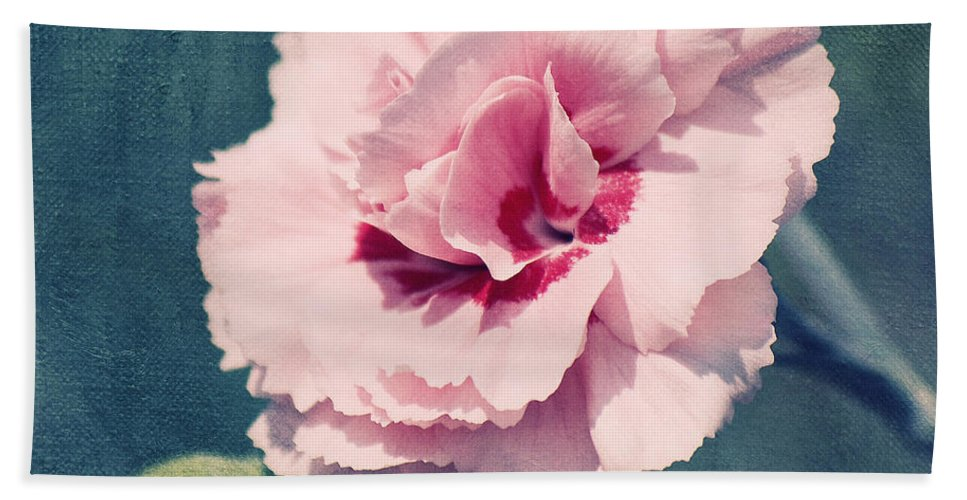 Carnation Bath Sheet featuring the photograph Oeillet by Angela Doelling AD DESIGN Photo and PhotoArt