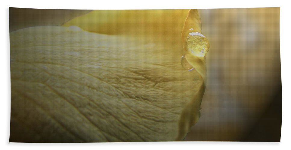 Botanical Hand Towel featuring the photograph Kiss Of Dew by Debbie Portwood