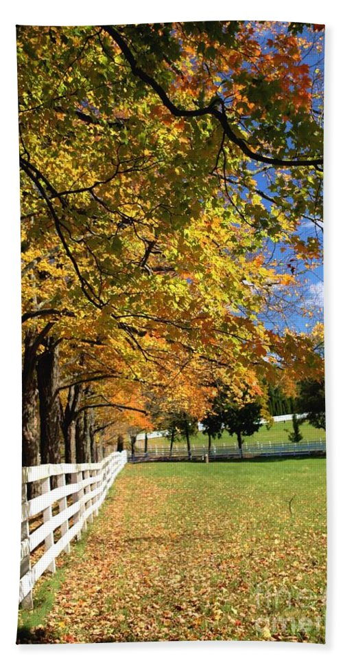 Landscape Hand Towel featuring the photograph Oh..what A Beautiful Morning by Living Color Photography Lorraine Lynch
