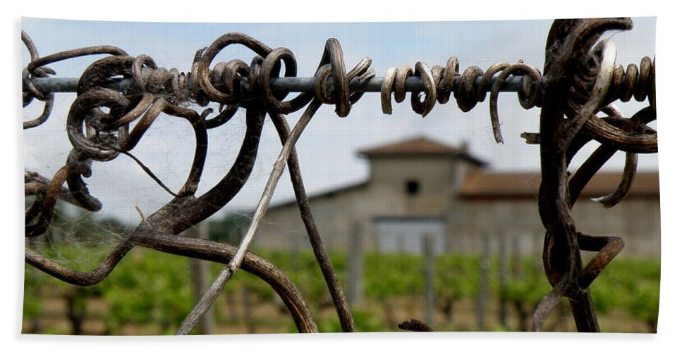 Vineyard Hand Towel featuring the photograph Old And New by Lainie Wrightson