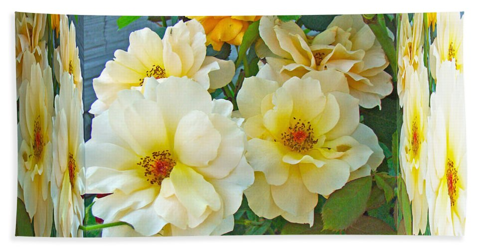 Rose Hand Towel featuring the photograph Old Fashioned Yellow Rose - Mirror Box by Mother Nature