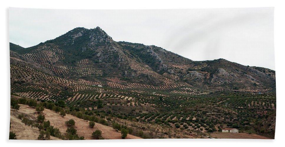 Cordoba Bath Sheet featuring the photograph Olive Oil Mountain by Lorraine Devon Wilke