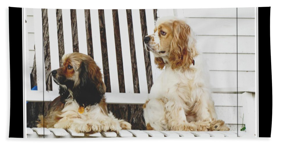 Bath Sheet featuring the photograph On Guard by Debbie Portwood