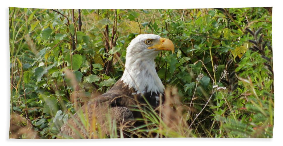 Eagle Bath Towel featuring the photograph On The Hunt by Rick Monyahan