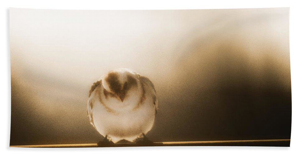 Birds Bath Sheet featuring the photograph On Winters Edge by Susan Capuano
