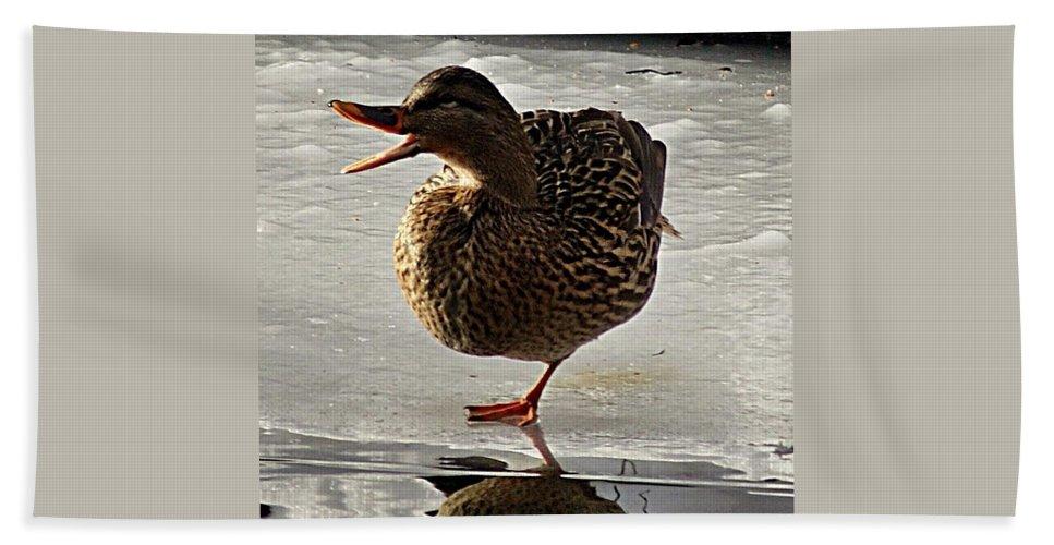 Duck Bath Sheet featuring the photograph One-legged Duck by Joe Faherty