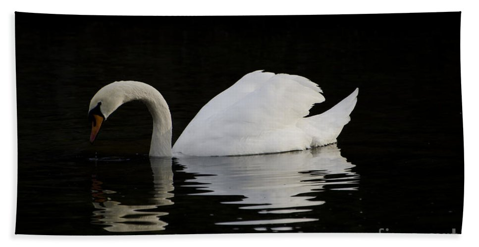 One Swans Hand Towel featuring the photograph One Swan by Mats Silvan