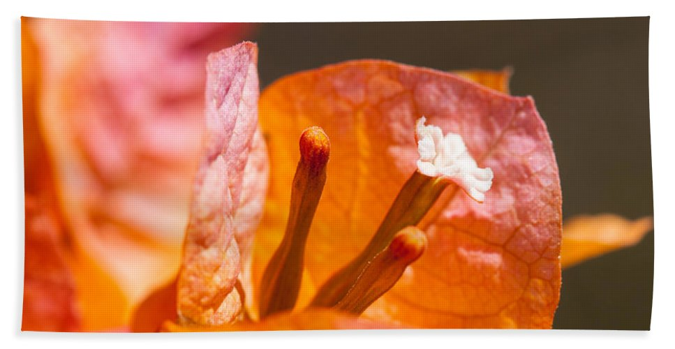 Ralf Bath Sheet featuring the photograph orange Bougainvillea by Ralf Kaiser