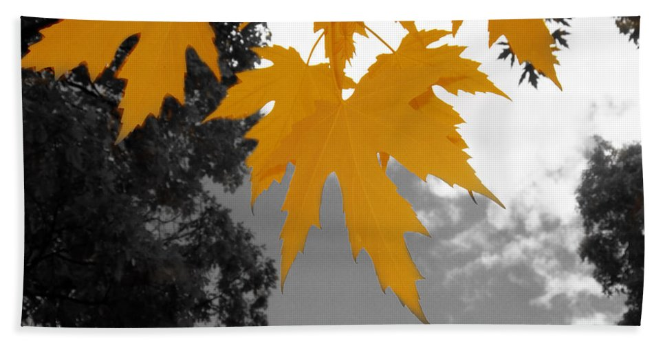 Scene Bath Sheet featuring the photograph Orange Maple Leaves by Mary Mikawoz
