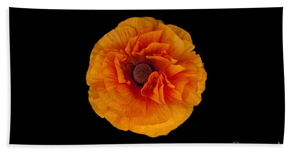 Flower Hand Towel featuring the photograph Orange by Philip Golan