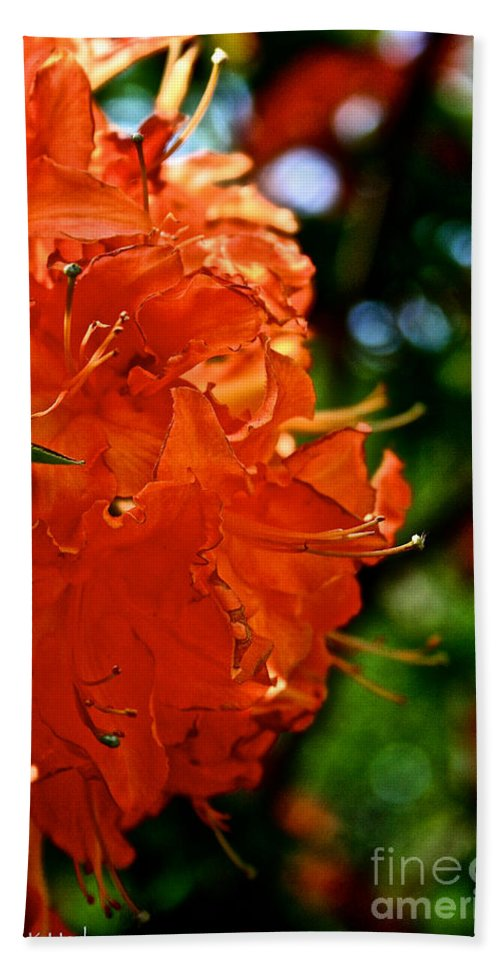 Plant Bath Sheet featuring the photograph Orange by Susan Herber