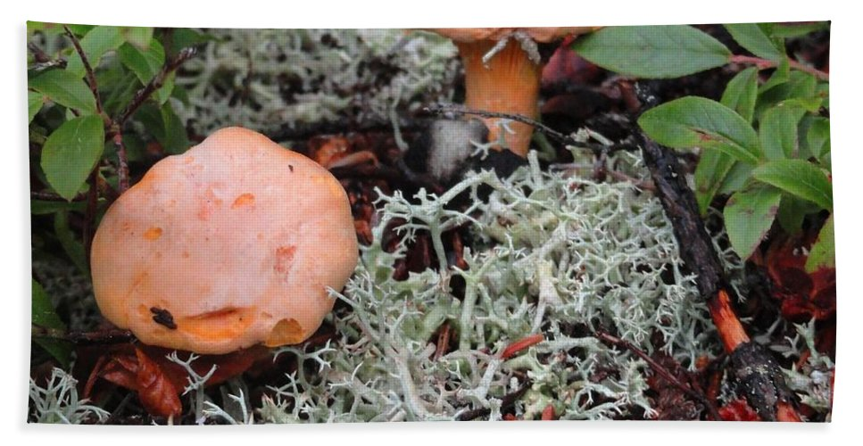Mushroom Bath Sheet featuring the photograph Orange Towers On White by Meandering Photography