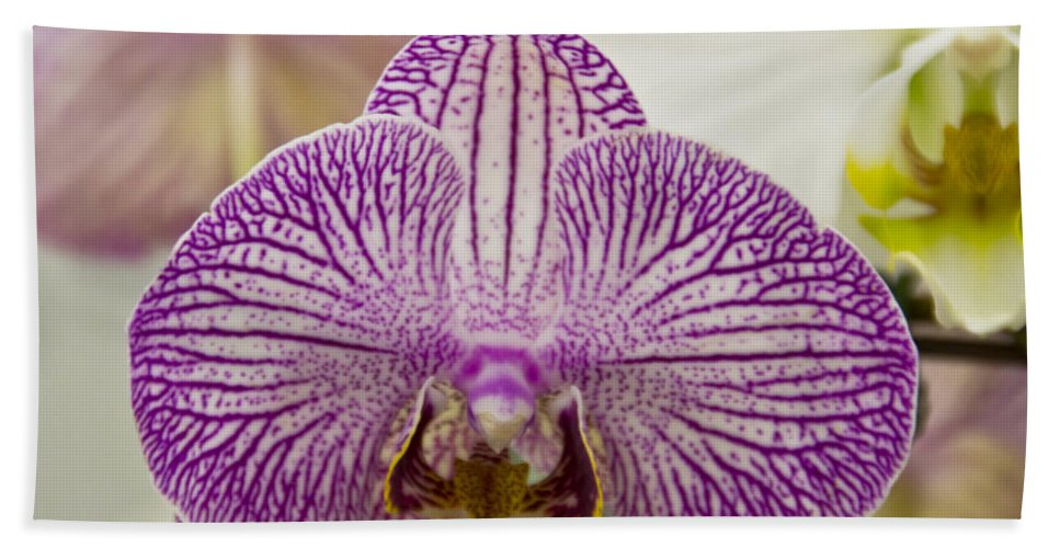 Exotic Hand Towel featuring the photograph Orchid Originality by Angelina Tamez