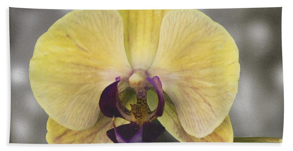 Mixed Media Hand Towel featuring the photograph Orchid Study III by Patricia Griffin Brett