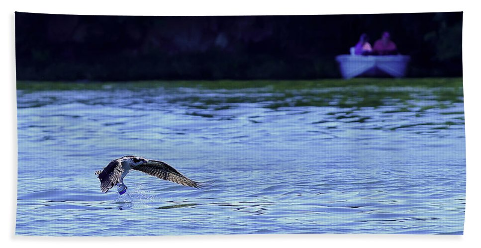 Ospreys Diving Bath Sheet featuring the photograph Osprey Cleaning The Lake by Randall Branham