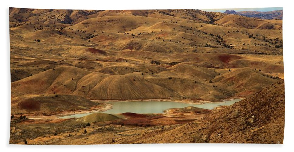 John Day Fossil Beds Hand Towel featuring the photograph Paint Around The Lake by Adam Jewell
