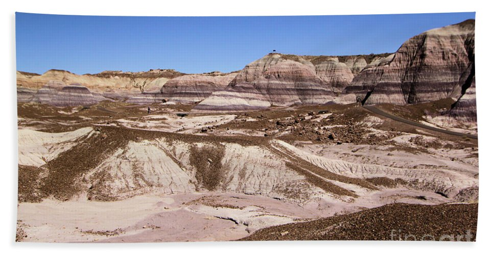 Petrified Forest National Park Bath Sheet featuring the photograph Painted Desert Landscape by Adam Jewell