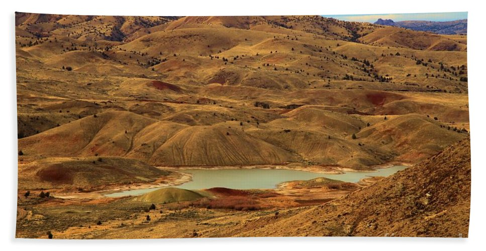 John Day Fossil Beds Hand Towel featuring the photograph Painted Hills Lake by Adam Jewell