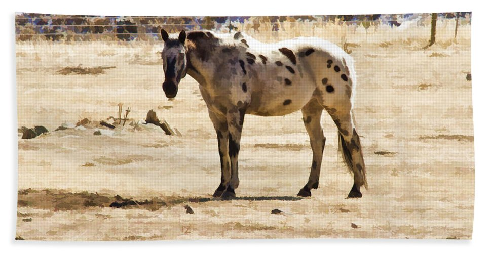 Photo Bath Sheet featuring the photograph Painted Horses II by Angelique Olin