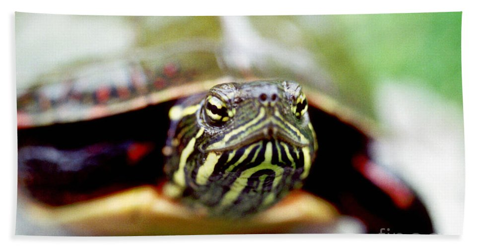 Animal Hand Towel featuring the photograph Painted Turtle by Ted Kinsman