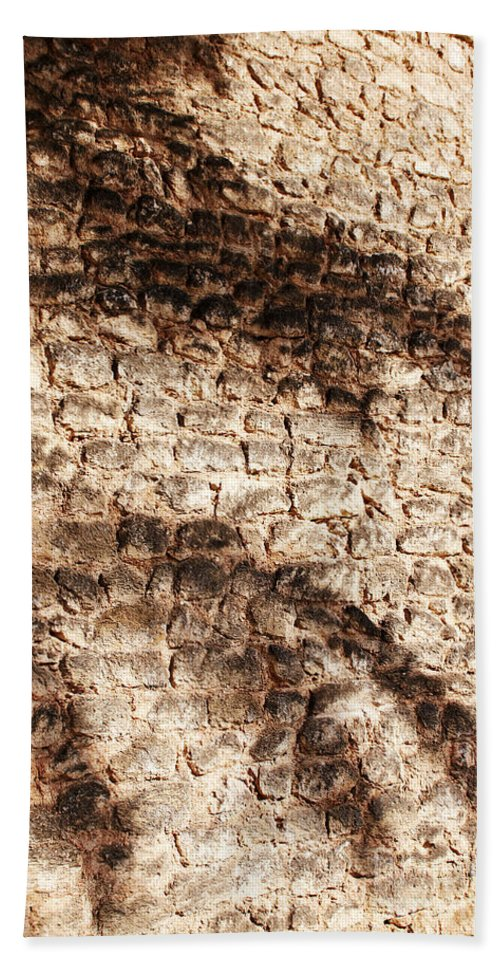 Palmera Bath Sheet featuring the photograph Palm Fragment by Agusti Pardo Rossello