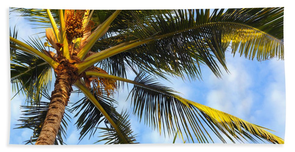 Palm Hand Towel featuring the photograph Palm Tree by Kenneth Sponsler