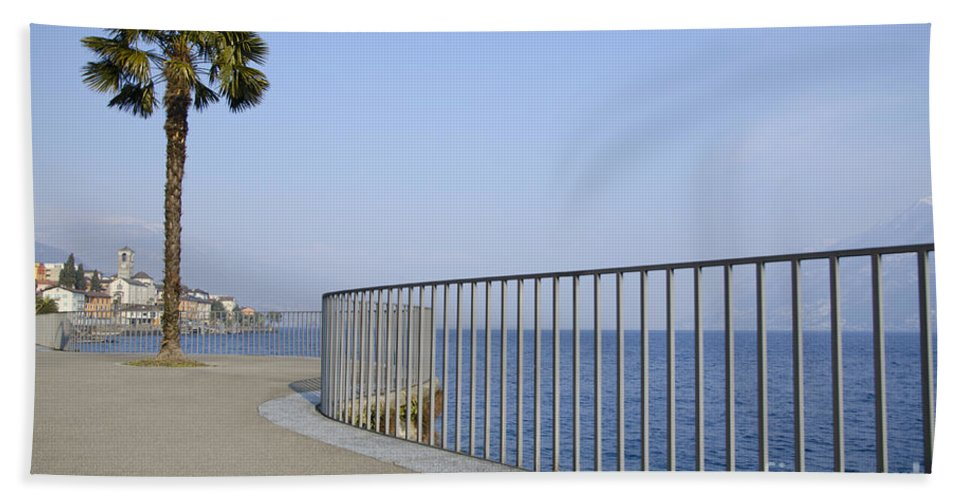 Palm Bath Sheet featuring the photograph Palm Tree On The Lakefront by Mats Silvan