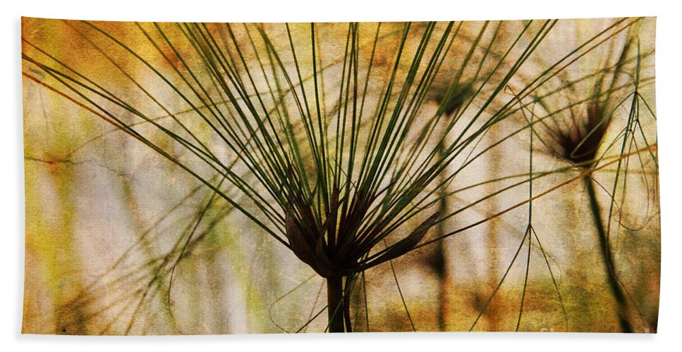 Pampas Bath Sheet featuring the photograph Pampas Grass by Susanne Van Hulst