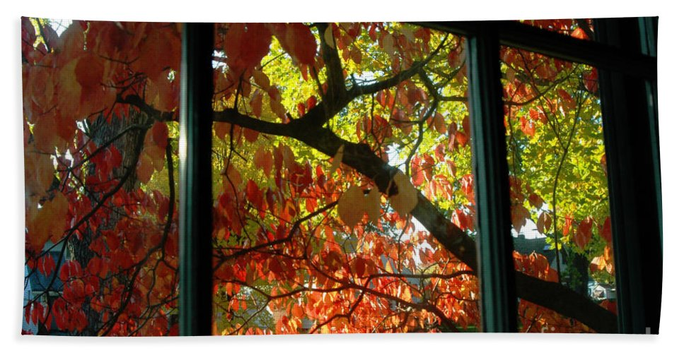Leaves Hand Towel featuring the photograph Pane Frames by Trish Hale