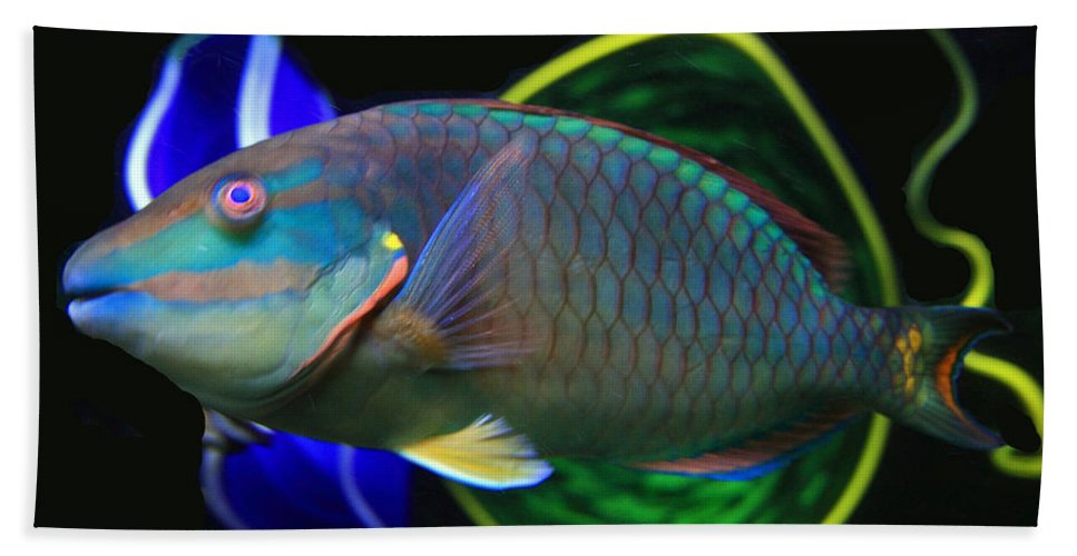 Parrot Fish Hand Towel featuring the photograph Parrot Fish With Glass Art by David Salter