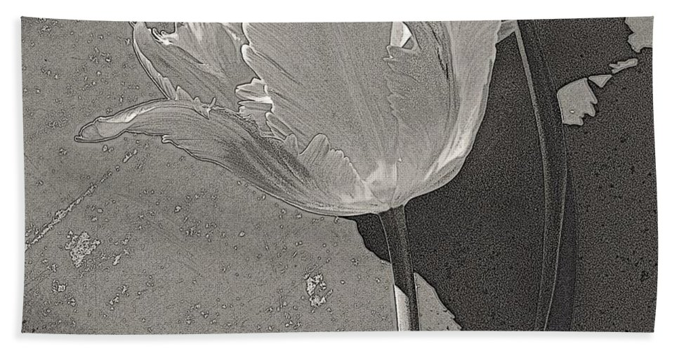 Nature Bath Sheet featuring the photograph Parrot Variety by Chris Berry