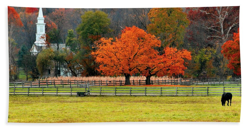 Autumn Hand Towel featuring the photograph Pastoral Autumn by Kristin Elmquist
