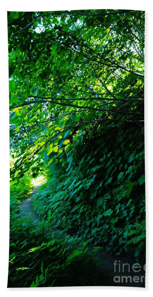 Leaves Hand Towel featuring the photograph Pathway by Jeff Swan