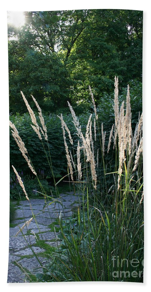 Outdoors Hand Towel featuring the photograph Pathway by Susan Herber