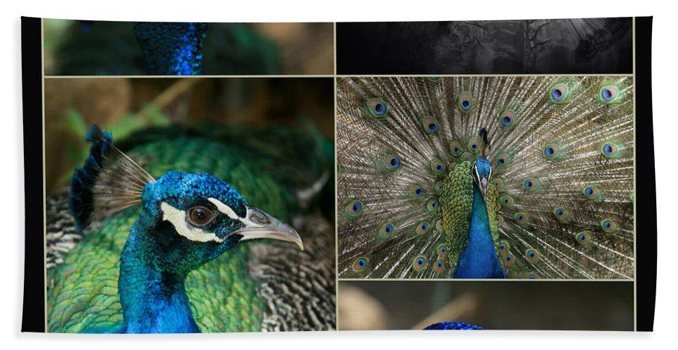 Aloha Hand Towel featuring the photograph Pavo Cristatus IIi The Heart Of Solitude - Indian Blue Peacock by Sharon Mau