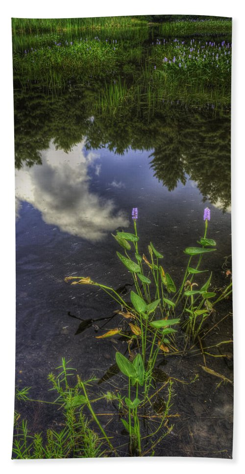 Landscape Bath Sheet featuring the photograph Peaceful Pond by Fran Gallogly