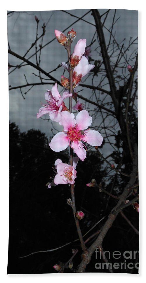 Peach Blooms Bath Sheet featuring the photograph Peach Blooms by Donna Brown