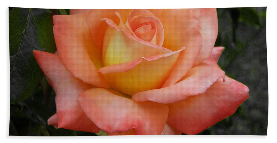 Rose Bath Sheet featuring the photograph Peachy by Tikvah's Hope