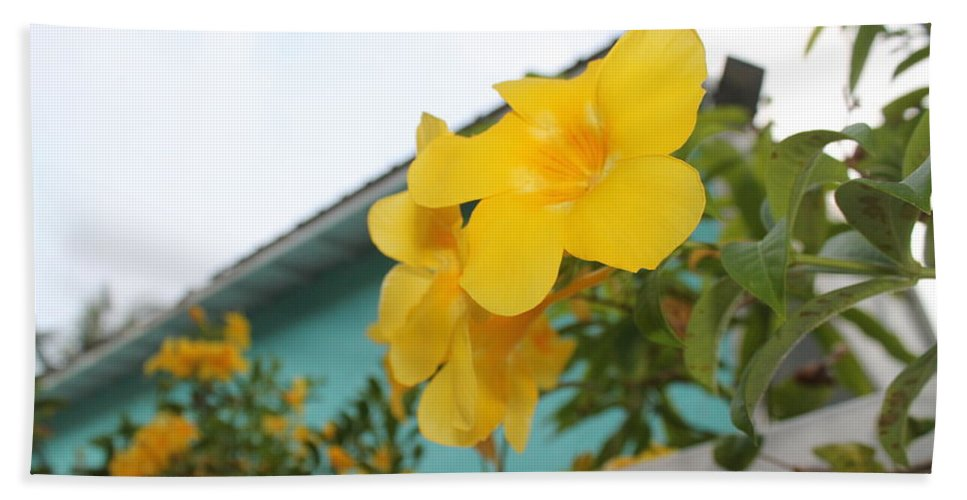 Yellow Tropical Flower Bath Sheet featuring the photograph Peeping Over The Fence by Catie Canetti