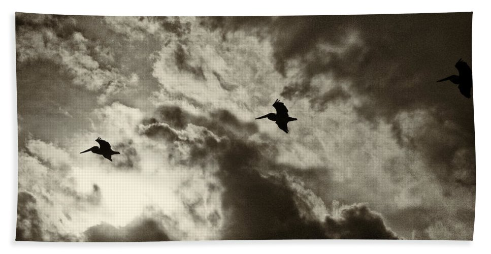 Pelicans Bath Sheet featuring the photograph Pelican Fly By by Roger Wedegis